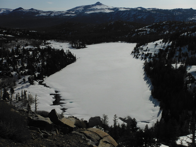 A look up 88 tapatalk for Caples lake fishing report